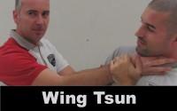 Wing Tsun mini
