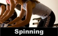 spinning mini